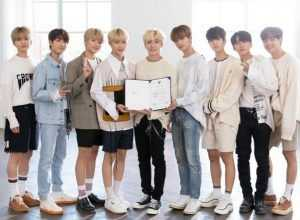 Stray Kids embajadores KOCIS